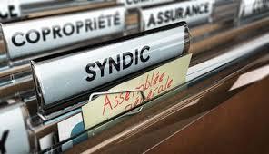 syndic-tanger