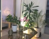 Location,Appartement 96 m² CAP TINGIS ,Tanger,Ref: LZ503 1 Bedroom Bedrooms,1 BathroomBathrooms,Appartement,CAP TINGIS ,1708